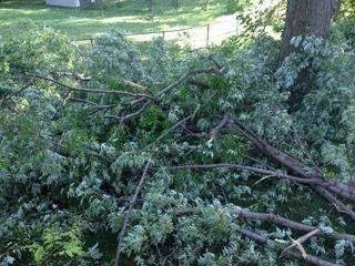 2013 Wind Storm 3